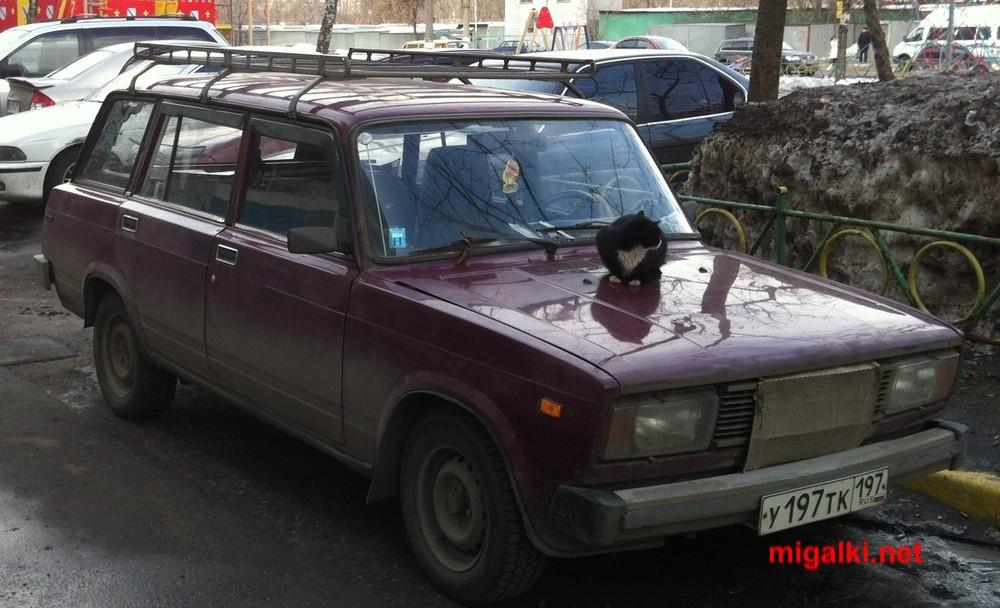 у197тк197