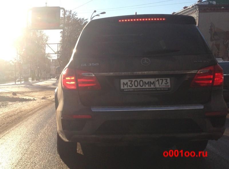 м300мм173